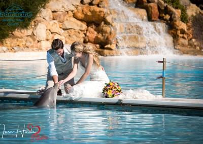 Zoomarine weddings